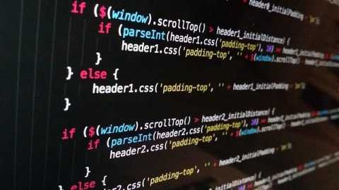 What does a programmer do exactly?